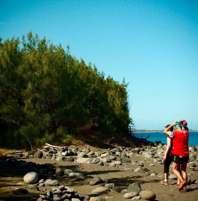 Sentier littoral Étang Salé